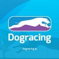 Go to the profile of Dogracing