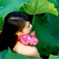 Go to the profile of Hoa Ngọc