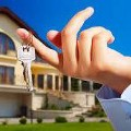 Go to the profile of Property Noida