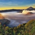 Go to the profile of Agent Wisata Bromo