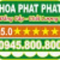 Go to the profile of nguyen phat
