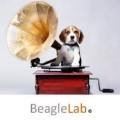 Go to the profile of Beagle Lab