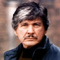 Go to the profile of Charles Bronson