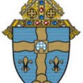 Go to the profile of Diocese of Joliet