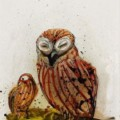 Go to the profile of the laughing owl