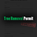 Go to the profile of Tree Removal Permit