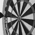 Go to the profile of Westchester County Darters Association