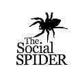 Go to the profile of The Social Spider