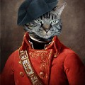 Go to the profile of General Cat