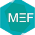 Go to the profile of MEF Moscow