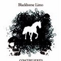 Go to the profile of Blackhorse Limo