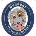 Go to the profile of Dog Spot