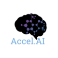 Go to the profile of Accel.ai