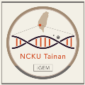 Go to the profile of igem.ncku.tainan