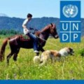 Go to the profile of UNDP Georgia