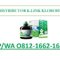 Go to the profile of Jual Klorofil K Link