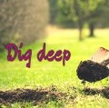Go to the profile of Dig deep