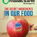 Friends of the Earth Newsmagazine