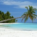 Go to the profile of Andaman Tourism