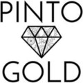 Go to the profile of Pinto Gold