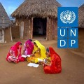 Go to the profile of UNDP