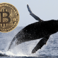 Go to the profile of Cryptowhale