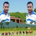 Go to the profile of alal dulal