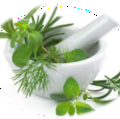Go to the profile of Ayurvedic Herbal Remedies
