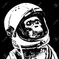 Go to the profile of Space Monkey