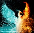 Go to the profile of I am Phoenix