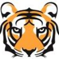 Go to the profile of TigerTech
