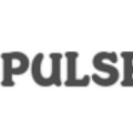 Go to the profile of Pulsehyip—Bitcoin investment business script