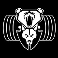 Go to the profile of BearWolf Training