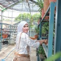 Go to the profile of Kurniati Hadiyani