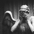 Go to the profile of Where Angels Fear