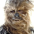 Go to the profile of Boston Wookiee