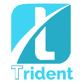 Go to the profile of Trident Crypto Index Fund