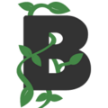 Go to the profile of Beanstalk Web Solutions