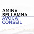 Go to the profile of Amine Sellamna le Blog