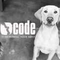 Go to the profile of CodeTalent