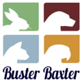 Go to the profile of Buster Baxter
