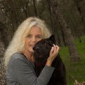 Go to the profile of Judy Musgrove