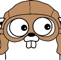 100 Days of Golang