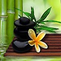 Go to the profile of Fertility Spa
