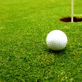 Go to the profile of Fair Weather Golf