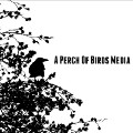 Go to the profile of A Perch of Birds Media