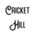 Go to Cricket Hill