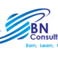 Go to the profile of BN Global Consulting