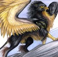 Go to the profile of gryphon