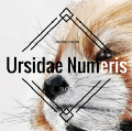 Go to the profile of Ursidae Numeris
